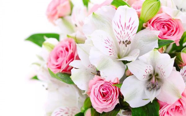 kakie-cvety-darit-na-8-marta-lyubimoj-zhenshhine-4