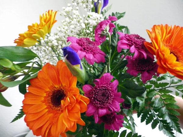 kakie-cvety-darit-na-8-marta-lyubimoj-zhenshhine-6