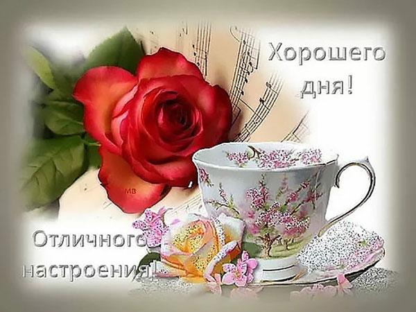 xoroshego-dnya-i-otlichnogo-nastroeniya-otkrytki-s-pozhelaniyami-1
