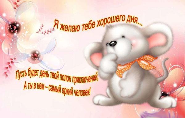 xoroshego-dnya-i-otlichnogo-nastroeniya-otkrytki-s-pozhelaniyami-14