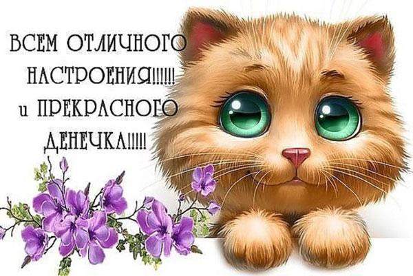 xoroshego-dnya-i-otlichnogo-nastroeniya-otkrytki-s-pozhelaniyami-2