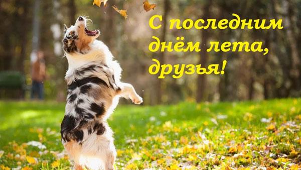 statusy-dlya-socsetej-poslednij-den-leta-i-konec-leta-6