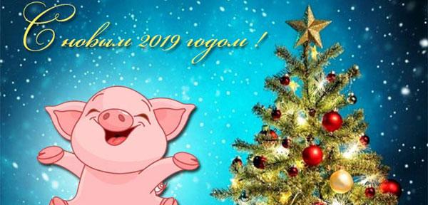 korotkie-tematicheskie-sms-na-2019-novyj-god-svini-chetverostishya