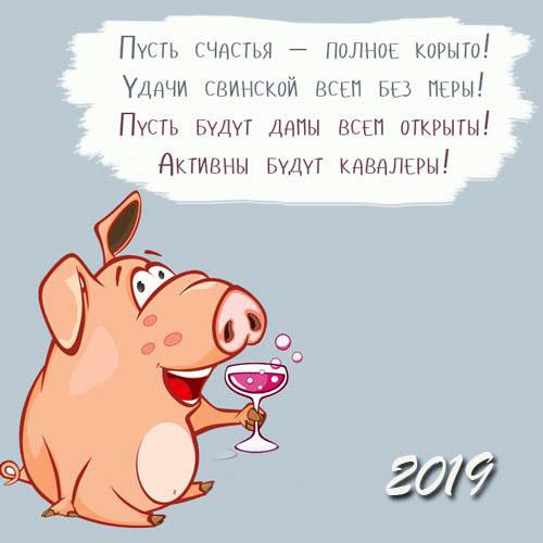 prikolnye-i-smeshnye-pozdravleniya-pro-svinyu-na-novyj-god-2019